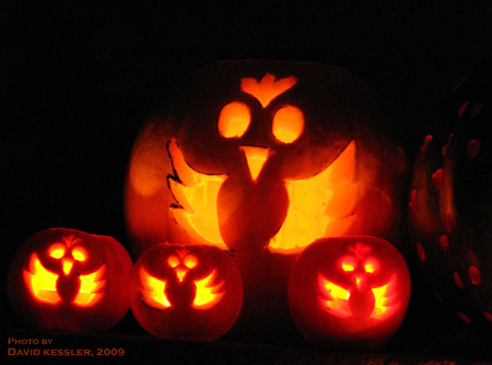 family of chicken pumpkins, by Laura Bassett